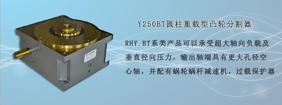 Y250BT圆柱重载型凸轮分割器